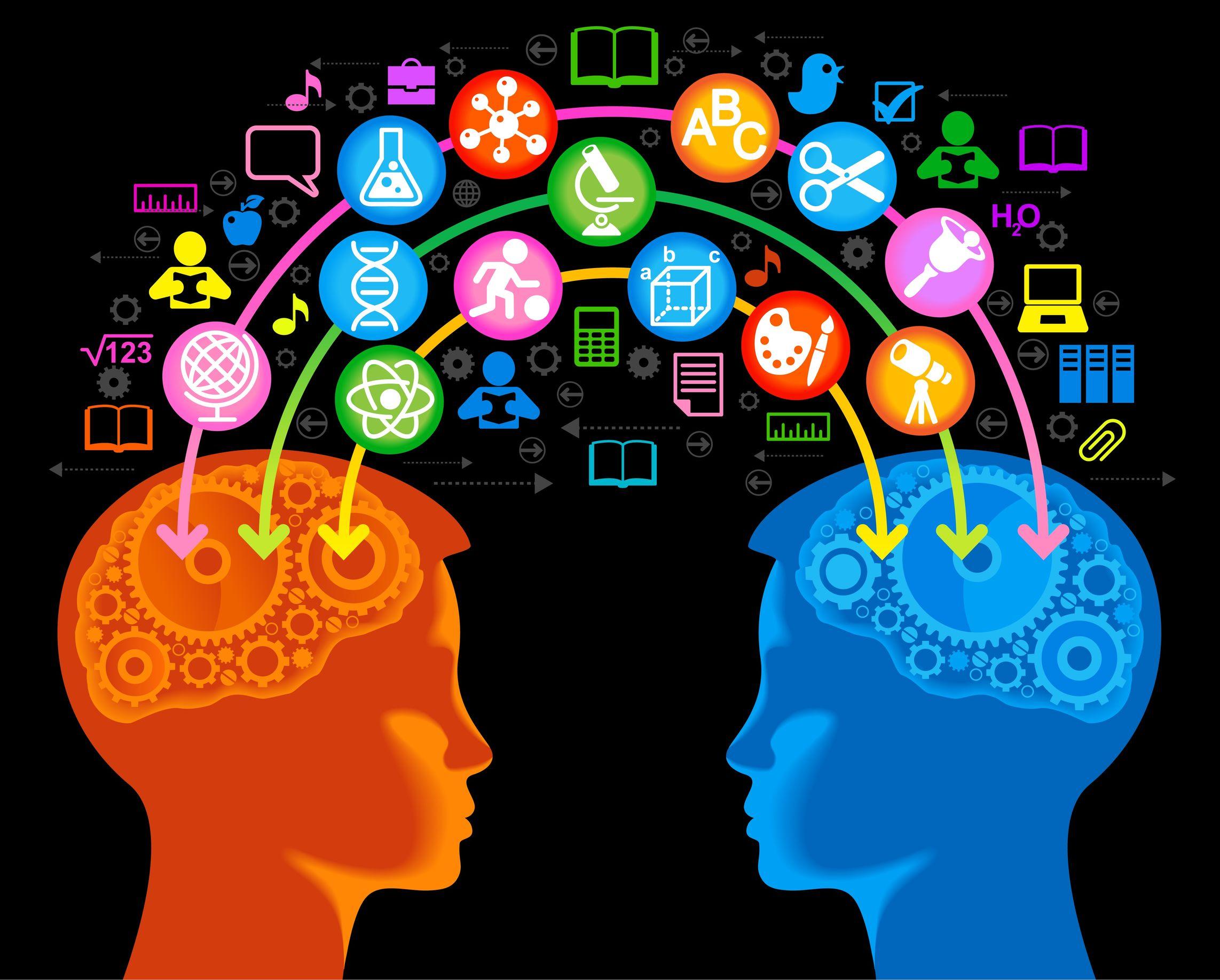cerveau lien social funny learning